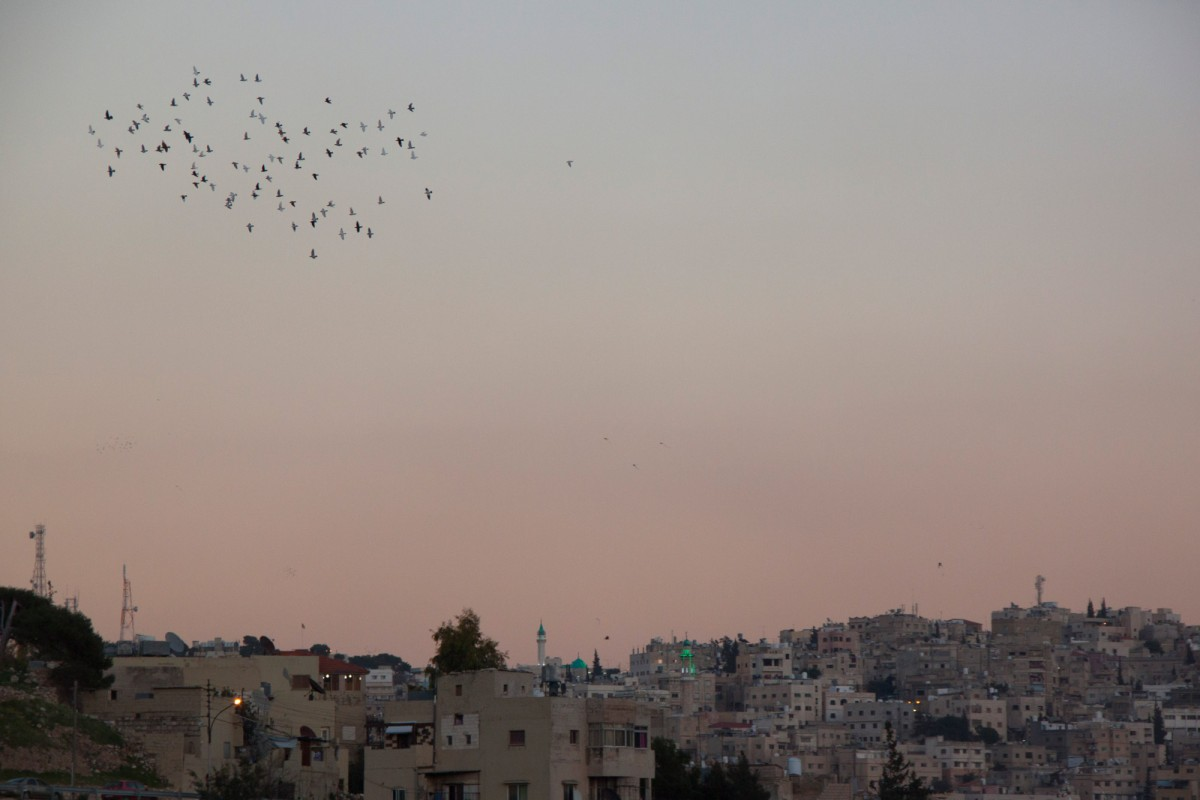 During dusk there is a special atmosphere in the capital. Flocks of pigeons circle the sky while you can hear the Muezzin singing from his mosque.